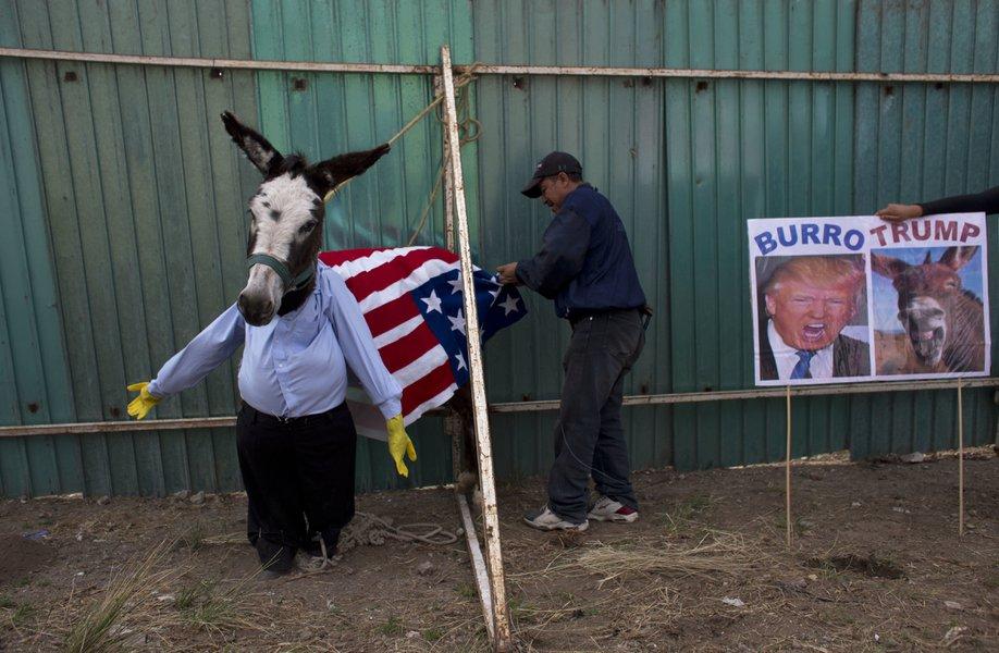 donkey festival