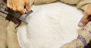 U.S. lawmaker urges openness in sugar trade deal with Mexico