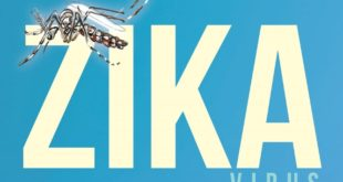 Factbox: Why the Zika virus is causing alarm