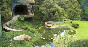 Organic Architect in Mexico finds inspiration in snakes and peanuts