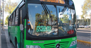 Puerto Vallarta to purchase 300 natural gas buses