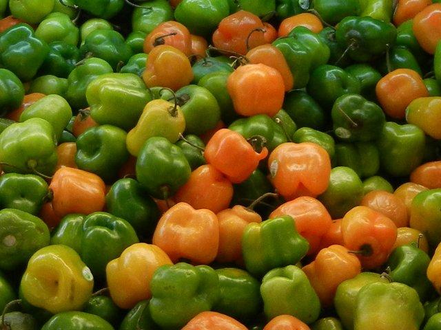Manzano Pepper