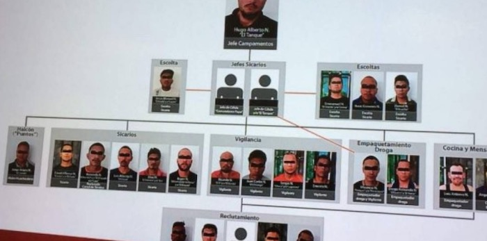 CJNG News - News and Information for CJNG by PVDN