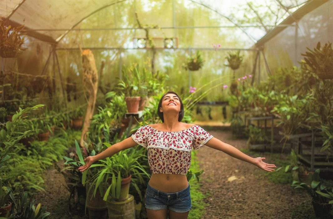 Lo de Perla Jungle Garden