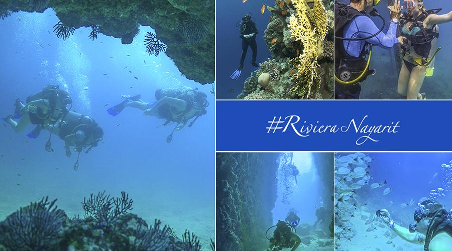 diving rivera nayarit