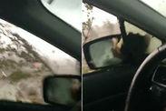 WATCH: Moment HUGE tornado mesmerises onlookers in FLOOD-RAVAGED Mexico