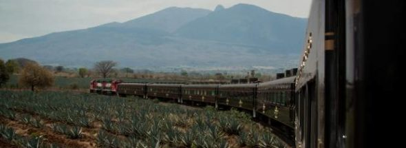 Jose Cuervo Express train ride to Tequila: The real story behind Mexico's famous drink