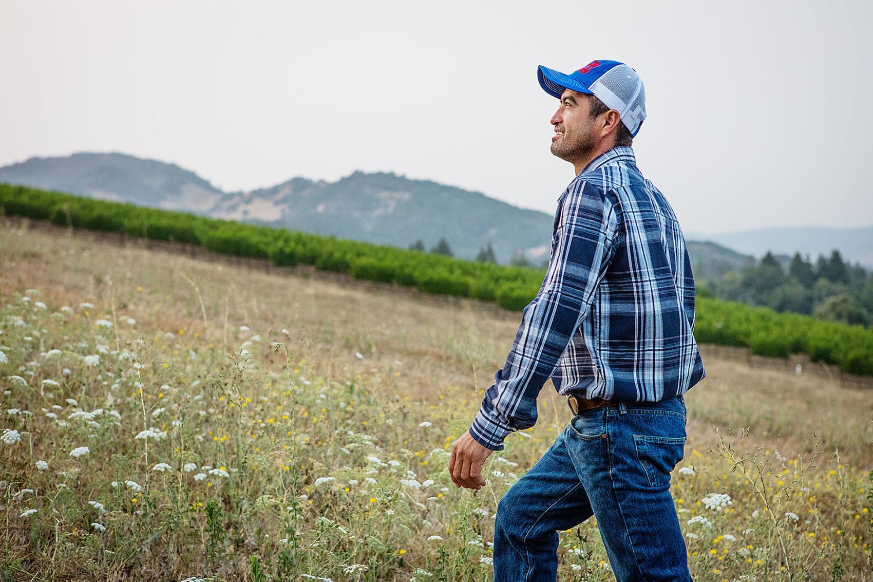 From Mexico to Napa: the story of Roberto Juarez