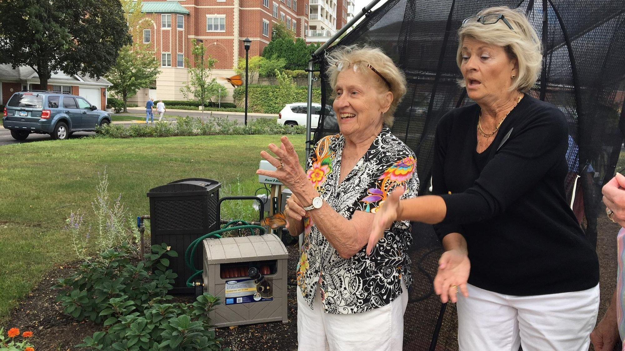 Monarchs from La Grange Park may be tracked to Mexico