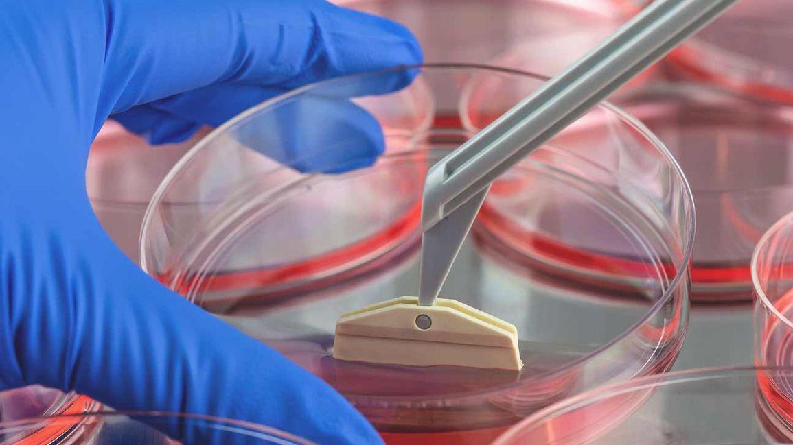 stem cell clinic puerto vallarta