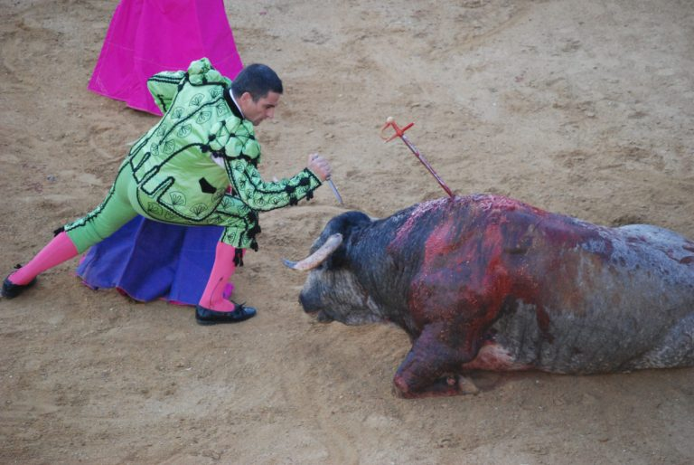 Mexico City moves to ban bullfighting