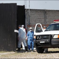 Bodies of 12 people found in plastic bags in Jalisco