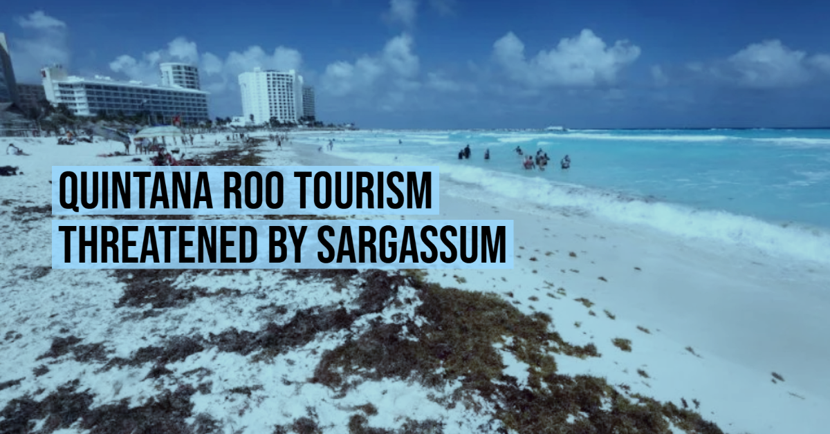 Quintana Roo tourism threatened by sargassum