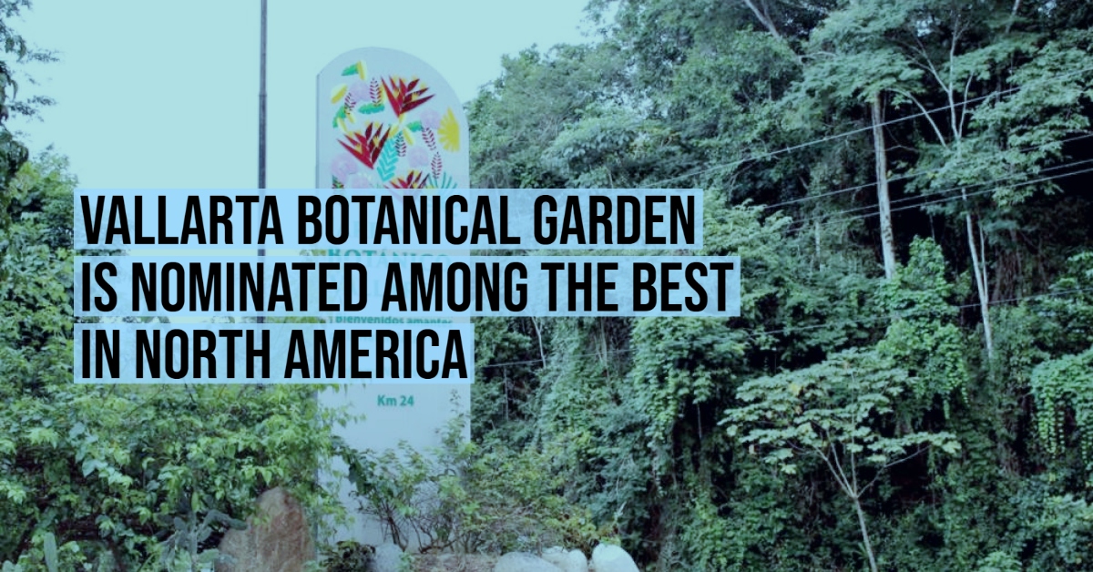 Vallarta Botanical Garden is nominated among the best in North America